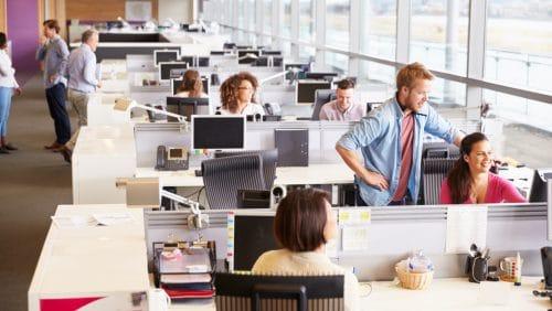 Überleben im Großraumbüro